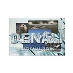 ABH Denali Rectangle Magnet (10 pack)