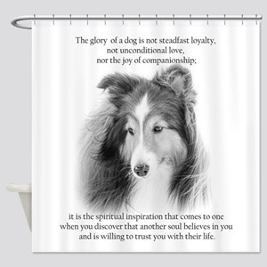 Sheltie Glory Shower Curtain