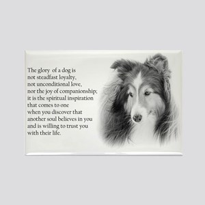Sheltie Glory Magnets