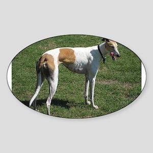 greyhound full Sticker