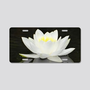 White water lily with black background Aluminum Li