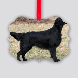 flat coated retriever black full Ornament