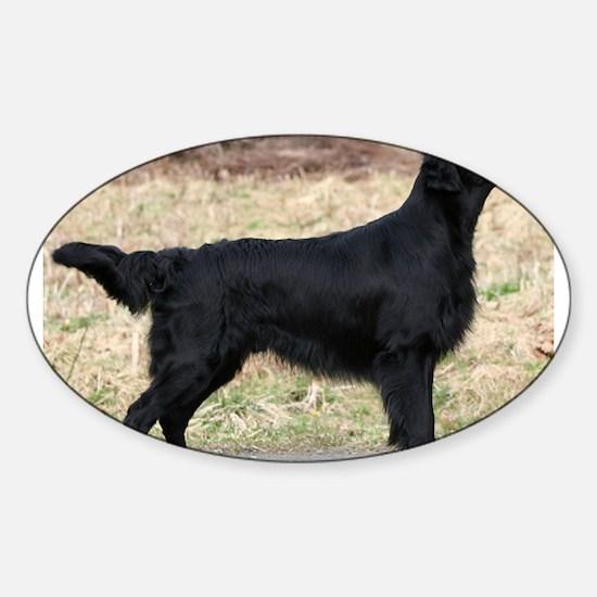 flat coated retriever black full Decal