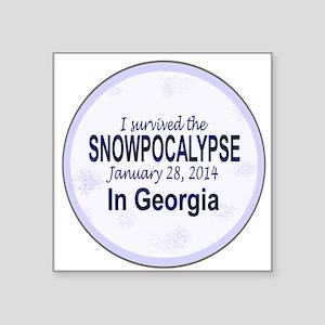 Snowcopalypse in Georgia Sticker