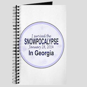 Snowcopalypse in Georgia Journal