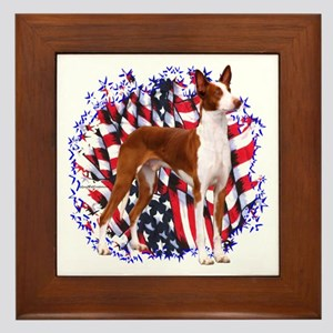 Ibizan Patriot Framed Tile