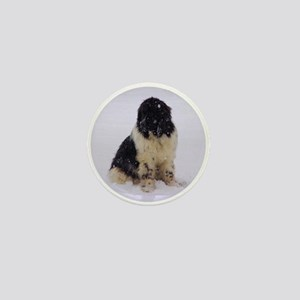 Snowy Landseer Mini Button