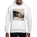 Northern Elephant Seal Hoodie