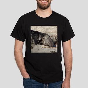 Northern Elephant Seal T-Shirt