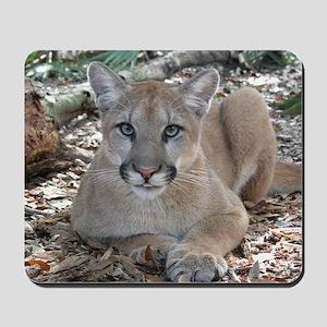 Cougar Artemis Mousepad