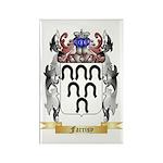 Farrisy Rectangle Magnet (100 pack)