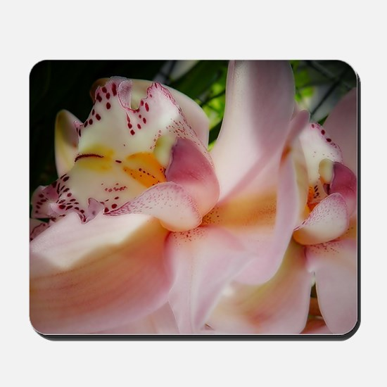 Pink orchid Mousepad