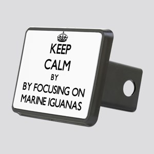 Keep calm by focusing on Marine Iguanas Hitch Cove
