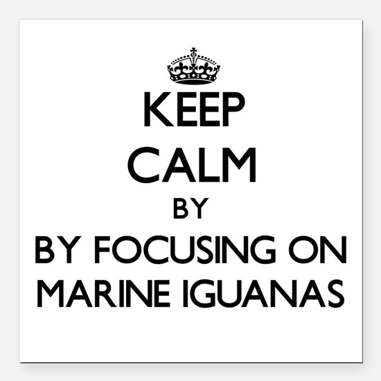 Keep calm by focusing on Marine Iguanas Square Car