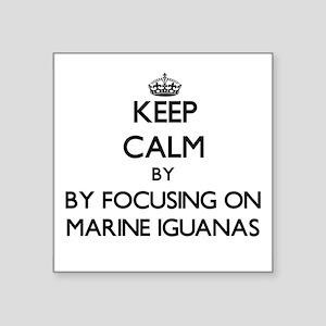 Keep calm by focusing on Marine Iguanas Sticker