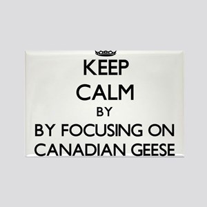 Keep calm by focusing on Canadian Geese Magnets