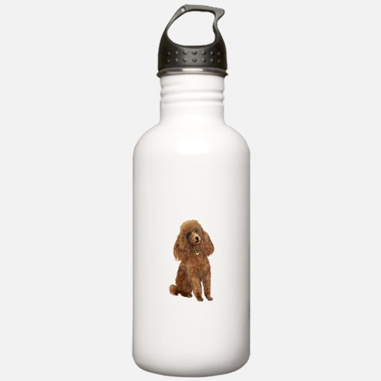 Poodle (toy-Min Apric. Water Bottle