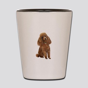 Poodle (toy-Min Apric.) Shot Glass