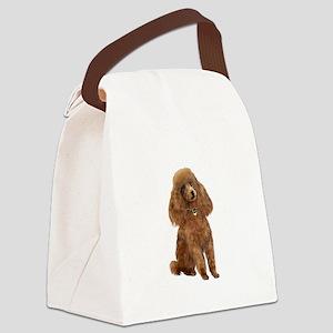 Poodle (toy-Min Apric.) Canvas Lunch Bag