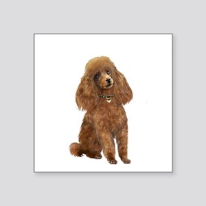 "Poodle (toy-Min Apric.) Square Sticker 3"" x 3"""