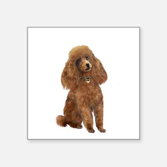 "Poodle (toy-Min Apric.) Square Sticker 3"" x 3"""