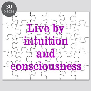 Intuition Consciousness Puzzle