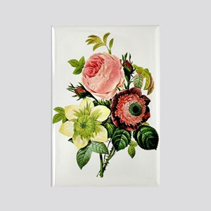 Rosa centifolia, anemone and clem Rectangle Magnet