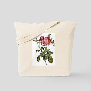 Rosa centifolia, cabbage rose, artwork by Tote Bag