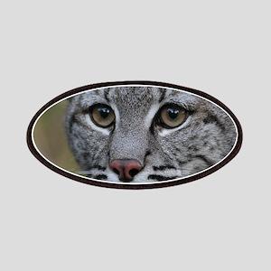 Bobcat Max Patches