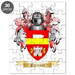 Farinone Puzzle