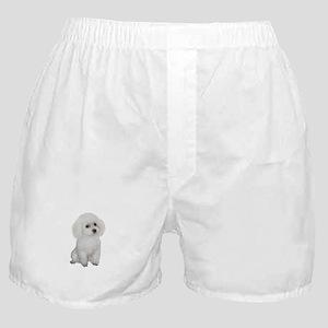 Poodle (MinW2) Boxer Shorts
