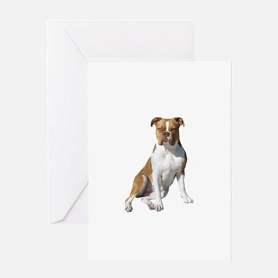 Am Bulldog 2 (Brn-W) Greeting Card