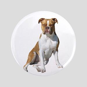 """Am Bulldog 2 (Brn-W) 3.5"""" Button"""