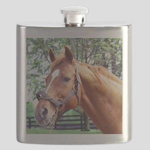 AFFIRMED Flask