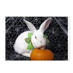 Romeo-Halloween Bunny Postcards (Package of 8)