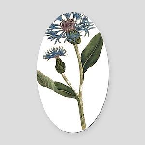 Vintage Blue Bottle Flower - Trans Oval Car Magnet
