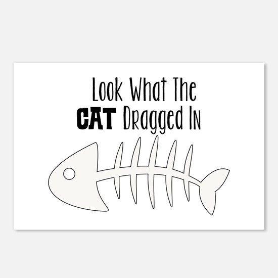 look what the cat dragged in Postcards (Package of