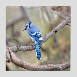Wild Birds Tile Coaster