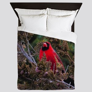 Male Cardinal Queen Duvet