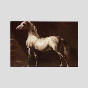 White Arabian Horse Magnets