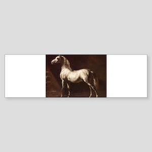White Arabian Horse Bumper Sticker