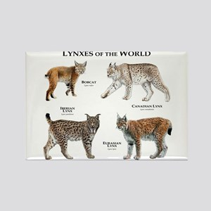 Lynxes of the World Rectangle Magnet