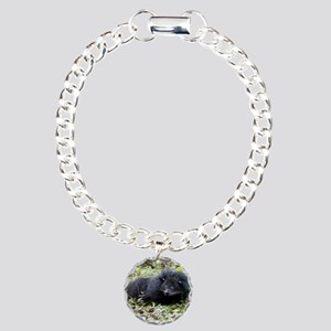 Bearcat Binturong Bracelet
