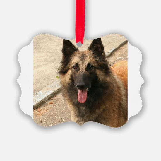 Belgian Shepherd Dog (Tervuren) Ornament