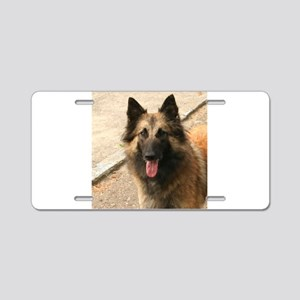 Belgian Shepherd Dog (Tervuren) Aluminum License P