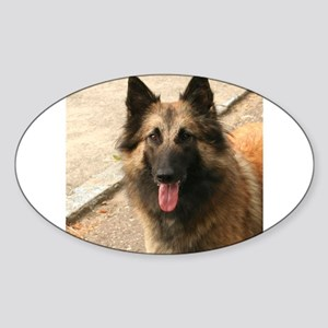 Belgian Shepherd Dog (Tervuren) Sticker