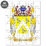 Fannon Puzzle