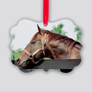 Seattle Slew Picture Ornament