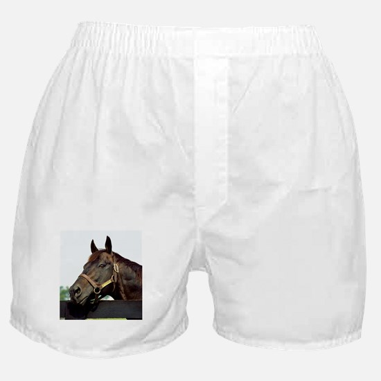 SEATTLE SLEW Boxer Shorts