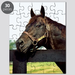 SEATTLE SLEW Puzzle